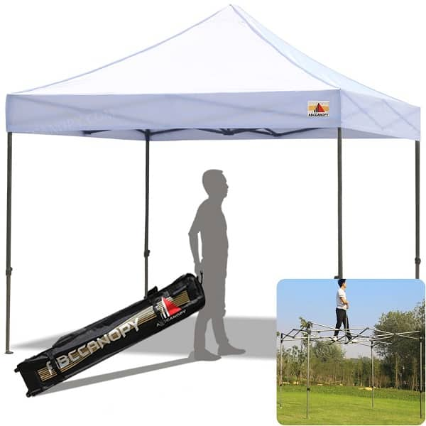 If you want a canopy that s fun and loud and bright 8f9433f85810